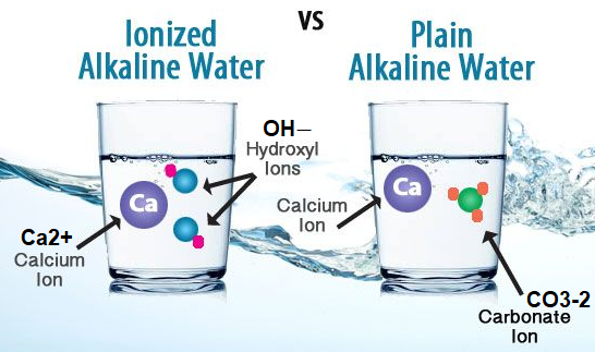 lifeionizers.com ionized vs alkaline water difference